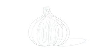 Garlic depiction