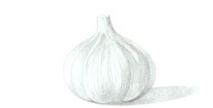 Garlic basic shading