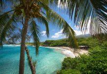 Best Islands in Hawaii to Visit