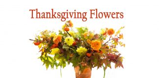 thanksgiving flowers-8 Types of Thanksgiving Flowers By Year