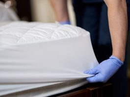 Protect your home from bed bug